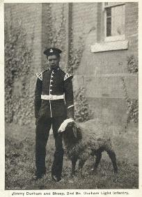 Photograph of James Durham with sheep [1900-1910] (D/DLI 7/194/8) - Copyright © Durham County Record Office.
